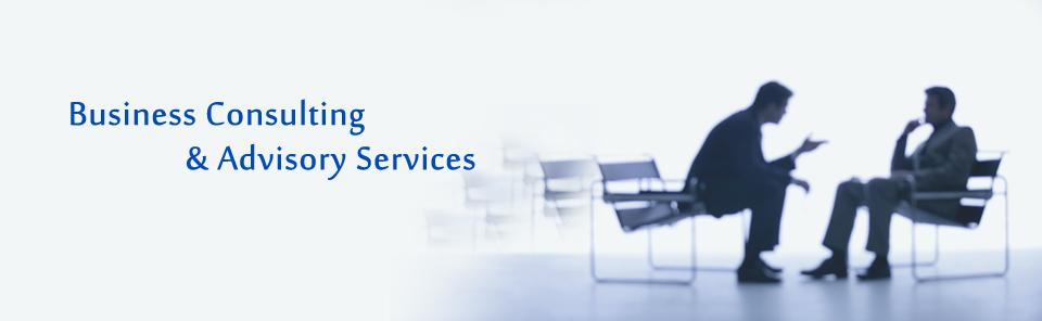 Advisory Services And Consulting Services  U2013 Sapa Associates